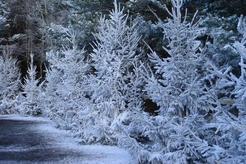 lumet-ulkokayttoon-lumitukku-5